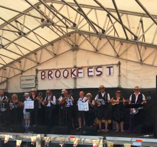 Brookfest_july17